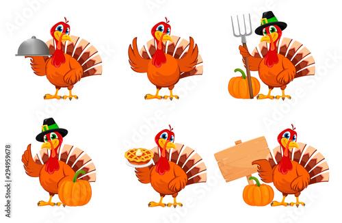Fotografia Thanksgiving turkey, set of six poses