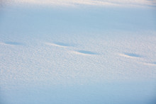 A Smooth Snowy Surface With Visible Traces Of A Person Or Animal Is Lit By The Setting Sun