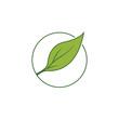 Organic leaf logo vector template