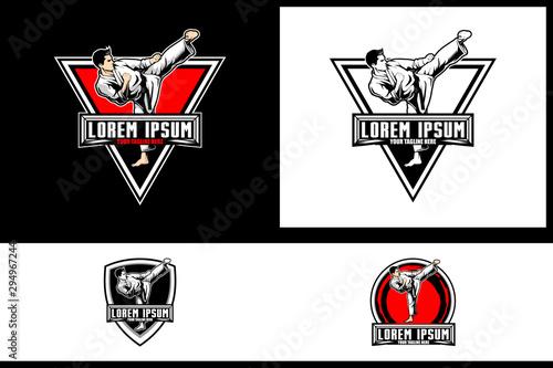 Obraz na plátně Kickboxing or Karate athlete Martial Arts or Self Defense vector badge logo temp