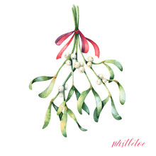 Hanging Mistletoe With Red Rib...