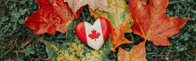 Heart Shape Wooden National Canadian Flag Symbol Lying On Ground In Autumn Fall Red Yellow Orange Maple Leaves. Web Banner Header For Website. Autumnal Season In Canada Country.