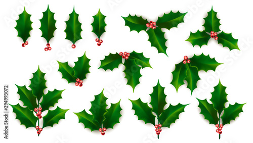Fotografie, Obraz Vector Realistic Holly, Ilex Branch with Berry and Leaves, Mistletoe set
