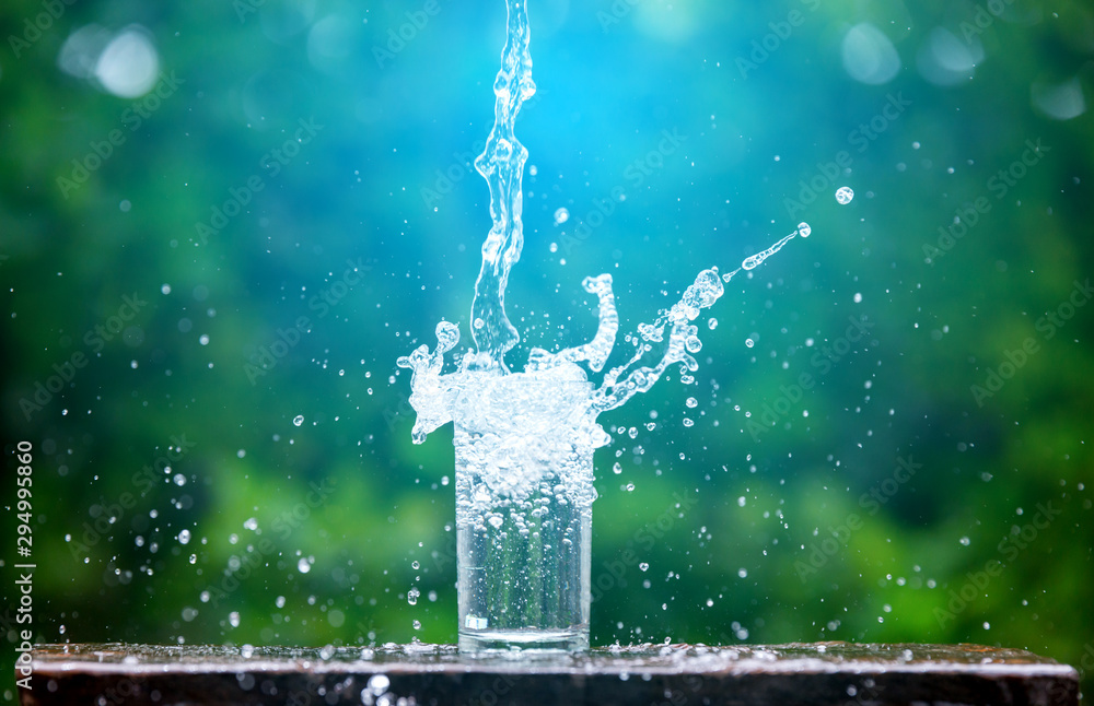 Fototapeta Drink water pouring in to glass over sunlight and natural green background.Select focus blurred background.