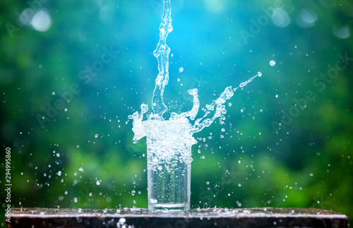 Obraz Drink water pouring in to glass over sunlight and natural green background.Select focus blurred background. - fototapety do salonu