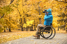 Wheelchair Man  Taking Pictures, Disabled Photographer In Yellow Autumn Park