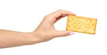Hand With Salty Cracker, Crisp...