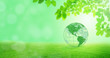 Leinwanddruck Bild - Ecology and Environmental Concept : Green planet earth globe with green trees in background.
