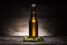 Beer In Bottle And Green Hop O...