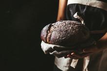 Rustic Bread In Baker Hand, He...
