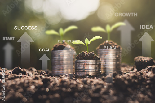Vászonkép  The seedlings are growing on the coins placed on the ground, thinking about financial growth