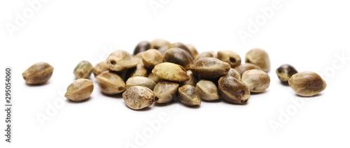 Obraz Hemp seeds isolated on white background, macro - fototapety do salonu