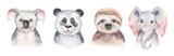 Fototapeta Fototapety na ścianę do pokoju dziecięcego - A poster with a baby panda, sloth, giraffe and koala. Watercolor cartoon elephant tropical animal illustration. Jungle exotic summer print.