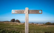 South Downs Way Footpath Sign. A Sign Giving Directions To The South Downs Way, A 100 Mile Walking Route Between Winchester And Eastbourne, South England.