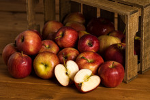 Harvested Apple Crate.