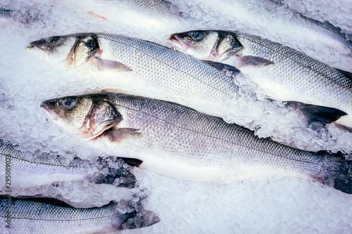 raw fish seabass ice cubes, fresh fish at the market Fototapet