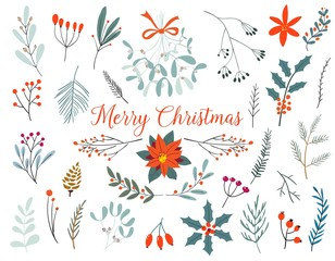 Hand drawn decorative christmas holly, misletoes, plant branches, twigs design element set. Winter Bouquets.