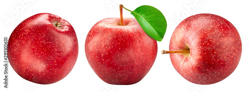Obraz na plátně Red apple collection isolated on white. Apple set Clipping Path.