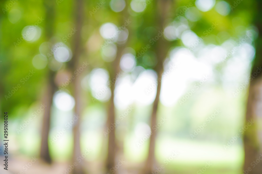 Fototapety, obrazy: Abstract green park blurred background with bokeh