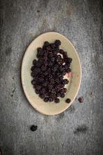 Fresh Picked Blackberries On Plate