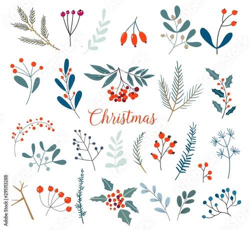 Świąteczna kolekcja kwiatowa z zimowymi dekoracyjnymi roślinami i kwiatami. Ładna ręcznie rysowane w stylu skandynawskim. Ilustracja zima jagody i boże narodzenie gałąź.