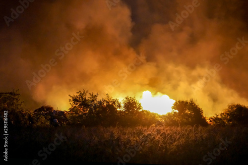 Poster Cerf Field fire at night
