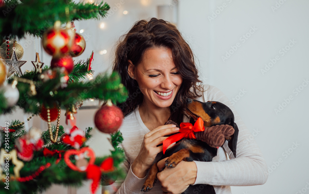 Fototapety, obrazy: Portrait of a excited woman receiving puppy for Christmas.