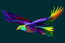 Soaring Bald Eagle.  Abstract,...
