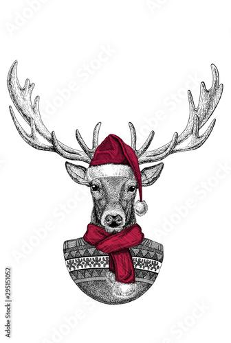 portrait-of-wild-deer-wearing-chrismtas-santa-claus-hat