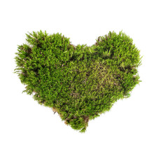 Heart Shape Green Moss Sphagnu...