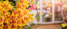 Banner Florist Shop, Closeup L...