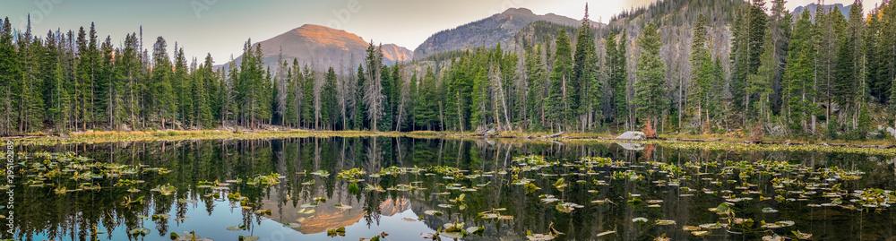 Fototapety, obrazy: Reflections on Nymph Lake in Rocky Mountain National Park