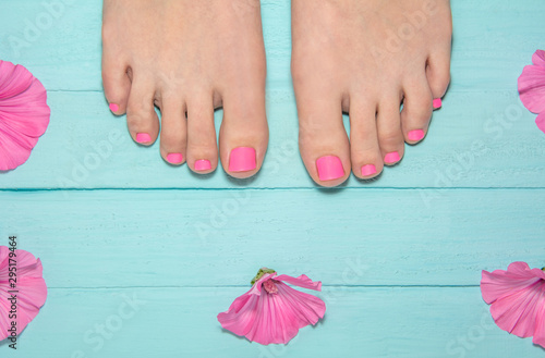 hot pink pedicure. top view of legs with pedicure. leg against the background of blue boards around pink flowers. blue wood background