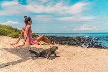 Galapagos Beach Iguana And Wom...