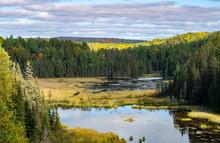 Beaver Pond Trail Of Algonquin Park, Ontario, Canada
