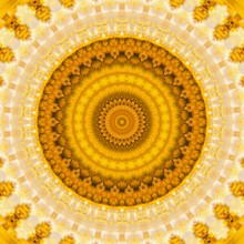 Pattern Yellow Geometric Kaleidoscope Symmetry. Colorful.