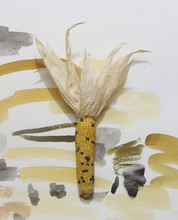 Abstract Corn