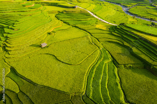 Photo sur Toile Les champs de riz Aerial top view of paddy rice terraces, green agricultural fields in countryside or rural area of Mu Cang Chai, Yen Bai, mountain hills valley at sunset in Asia, Vietnam. Nature landscape background.