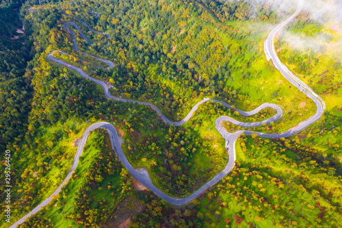 Aerial view of winding road on mountain in Autumn Slika na platnu