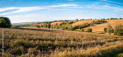 Foto op Plexiglas Weide, Moeras campagne agricole