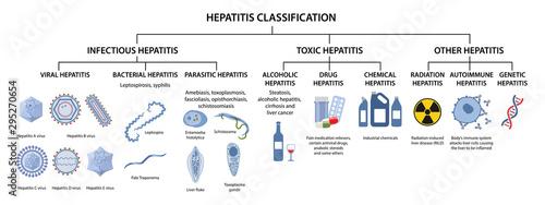 Obraz Hepatitis classification. Types of hepatitis: infectious, viral, bacterial, parasitic, toxic, alcoholic, drug,  autoimmune, radiation hepatitis. Vector illustration in flat style over white background - fototapety do salonu