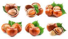 Hazelnuts Collection Isolated ...