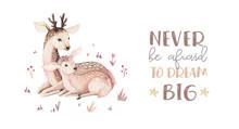 Watercolor Little Deer Baby An...