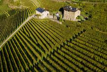 Valtellina (IT) - Vista Aerea Autunnale Di Azienda Vinicola Con Pannelli Solari