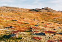 Fantastic Colorful Land Cover ...