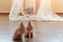 Funny Curious Cat Sits Under The Bride's Veil In The Morning And Looks At The Wedding Shoes.