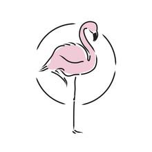 Flamingo Staying On One Leg Vector Illustration