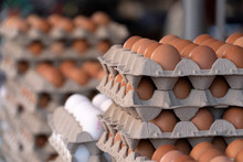Many Fresh Eggs At The Market