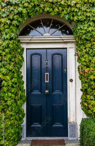 Georgian style vintage blue door house surrounded by green ivy leaves