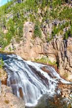 Gibbon Falls In Yellowstone National Park, Wyoming, USA